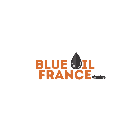 Blue oil france